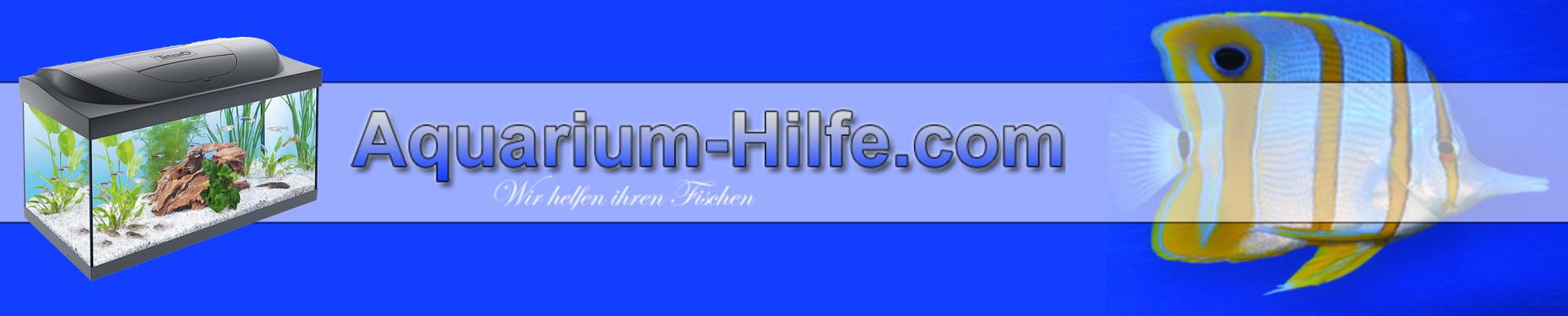 Aquarium-hilfe.com